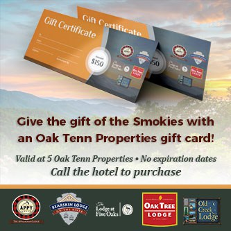 Gatlinburg lodging gift cards